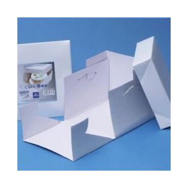 Caja PME 10 in - 25,4 cm